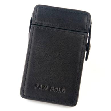 Кожаный чехол Easecase для Lotoo PAW Gold